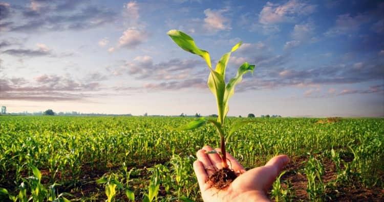 JAVNI POZIV za podnošenje zahtjeva za odobravanje i dodjelu podsticajnih sredstava za registraciju poljoprivrede kao osnovne djelatnosti