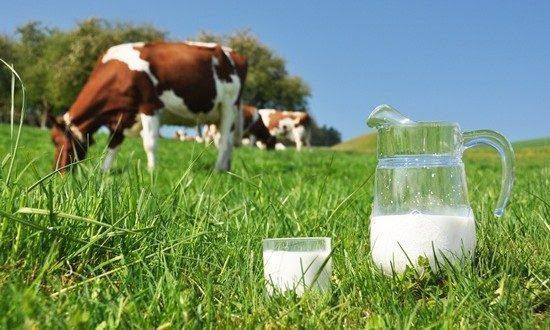 Obavijest za poljoprivredne proizvođače: Općinski podsticaj za proizvodnju svježeg kravljeg mlijeka za I kvartal 2020. godine